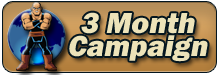 3 month campaign